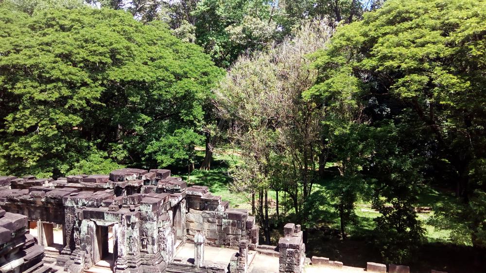 bayongarden