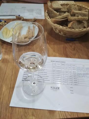 Ochutnávka vín ve vinařství Vican